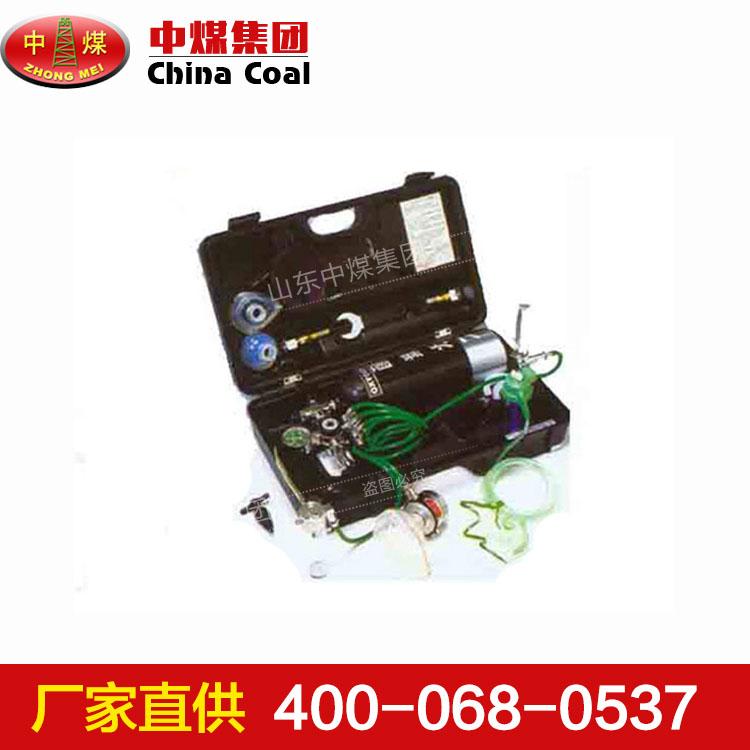 P-6便携式氧气自动复苏机,便携式氧气自动复苏机生产商畅销