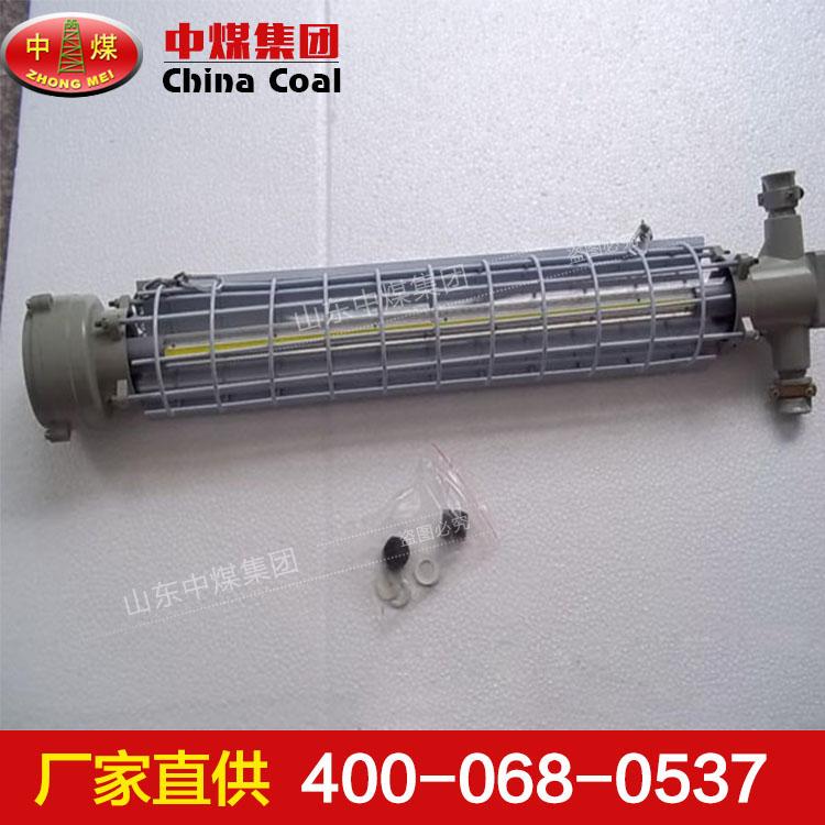 DGS10-24/127L(C)矿用隔爆型LED巷道灯厂商 LED巷道灯销售