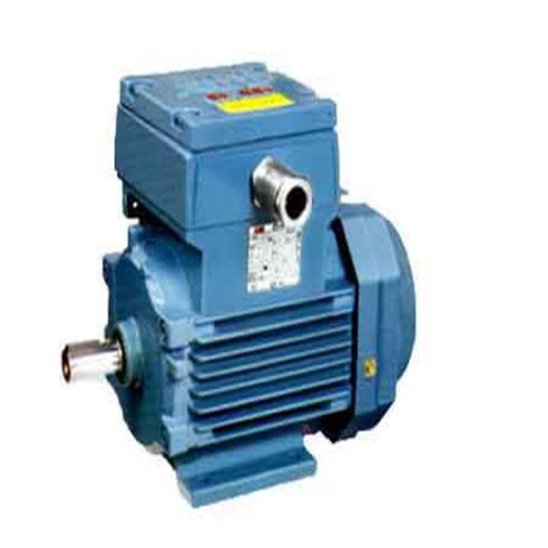 YBD系列隔爆型三相异步电机价格 隔爆型三相异步电机厂商
