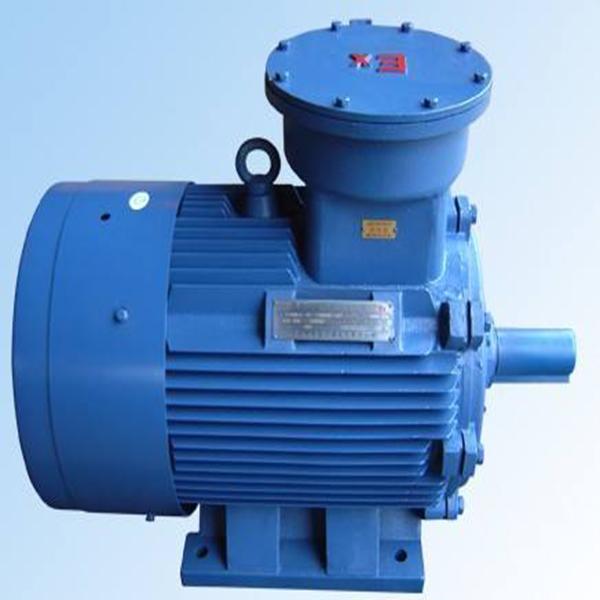 供应DSB系列隔爆型三相异步电机 三相异步电机现货
