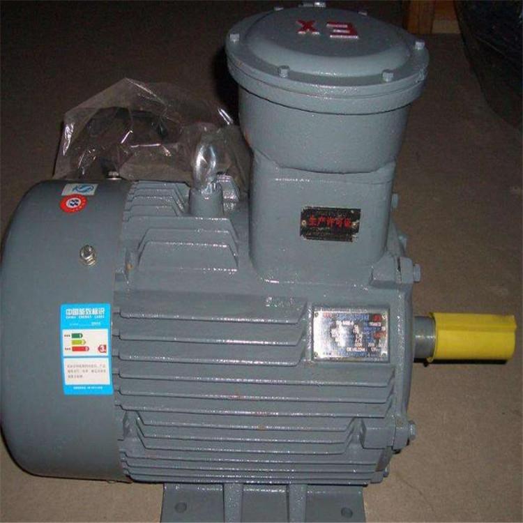 YFB系列粉尘防爆三相异步电动机 ,YFB系列粉尘防爆三相异步电动机 报价低