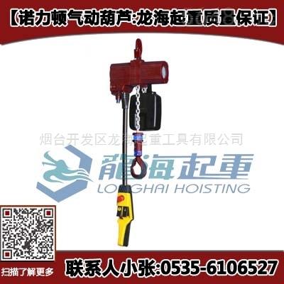 1.25吨双链条气动葫芦 诺力顿气动葫芦加悬臂吊用 北京