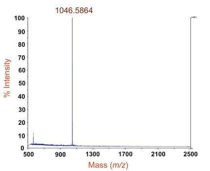 蛋白质分子量测定_质谱分析_百泰派克生物