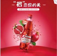 豪园红石榴汁500ml*15瓶装水果汁饮料休闲饮品厂家整箱批发