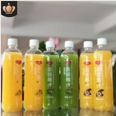 480ML*15瓶/箱饮料夏益生菌果汁 百香果汁芒果汁猕猴桃汁厂家直销