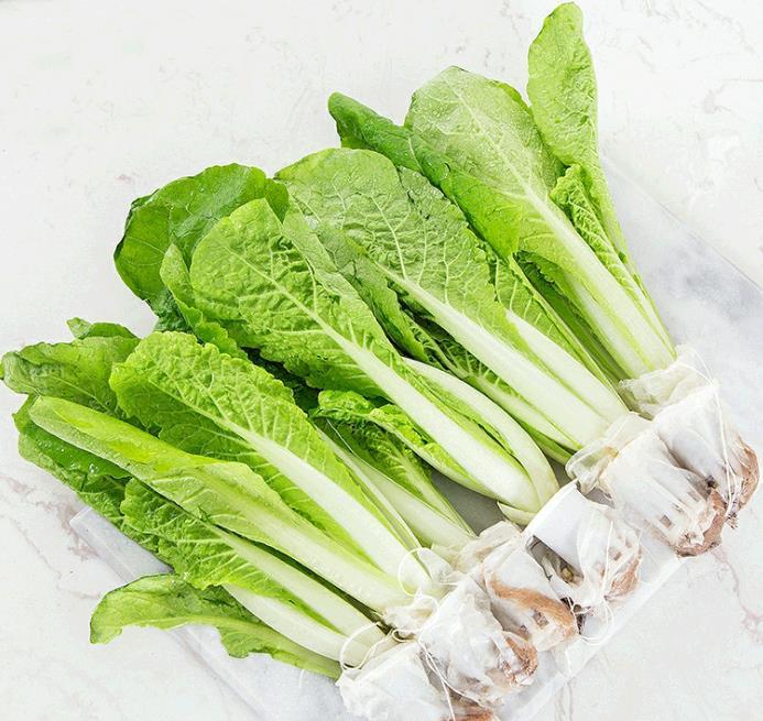 水培生菜2.5斤家庭混合装新鲜当季无公害绿色活体叶菜类5蔬菜包邮