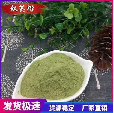 秋葵粉 批发供应 脱水秋葵粉 调味饮品 量大从优500克