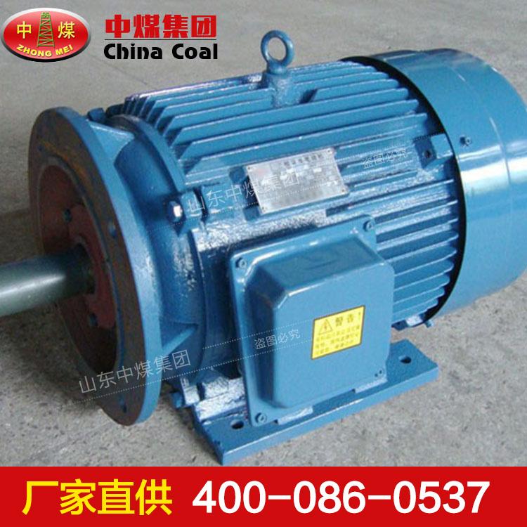 YBJ系列三相异步电机型号意义,YBJ系列三相异步电机型号使用条件