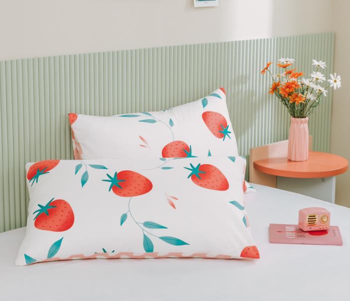 全棉斜纹13372ins小清新单品系列床上用品AB版一对装纯棉枕套